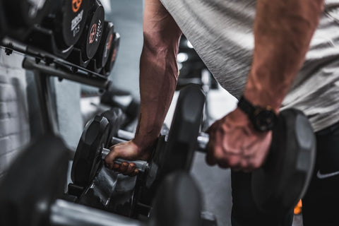 dumbbell and barbell workout