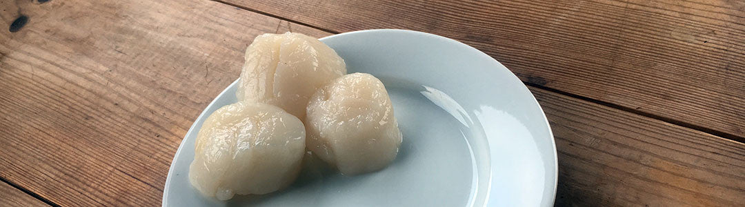 New In: King Scallops