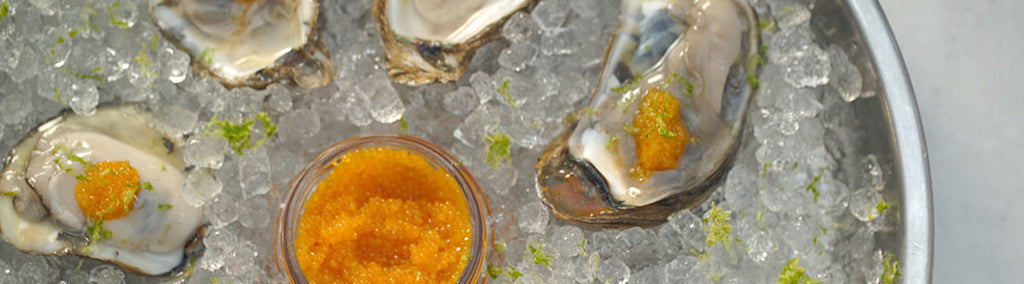 Recipe: Oysters, Gin and Lime