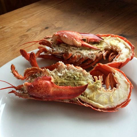 Medium Canadian Lobster - Dressed
