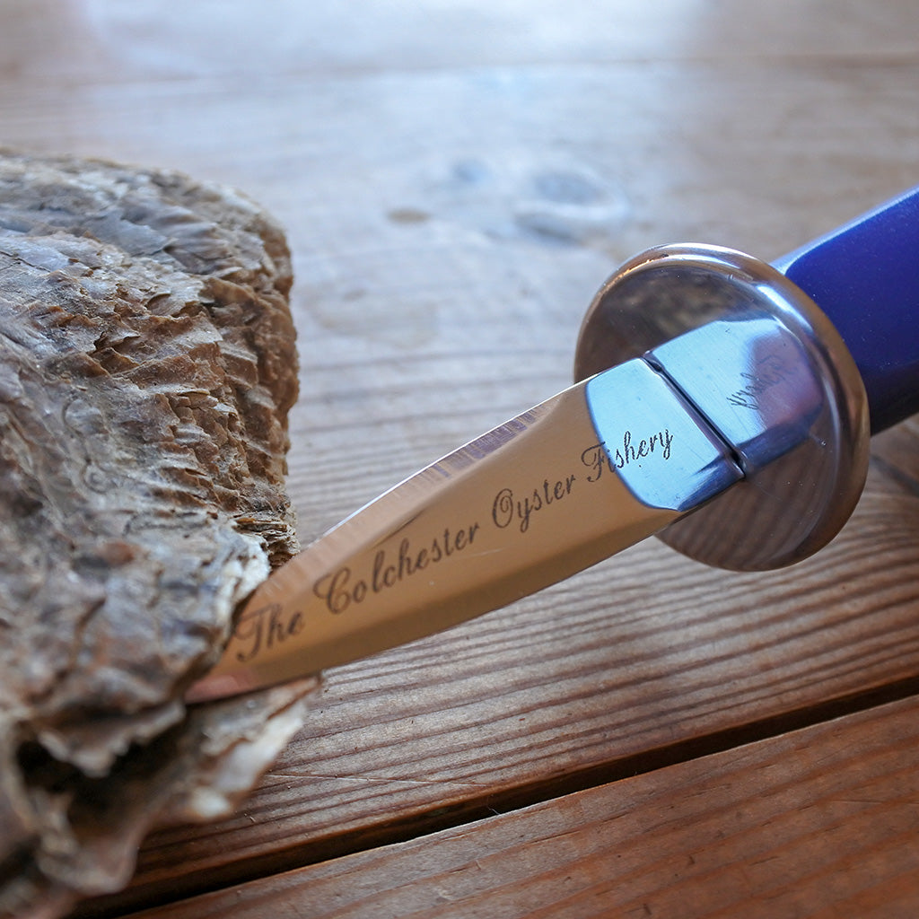 Oyster Knife with Guard