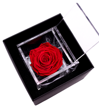 Load image into Gallery viewer, Flower Cube
