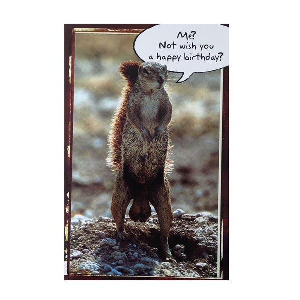 Birthday Card - Squirrel - Q&T 3D Cards and Envelopes