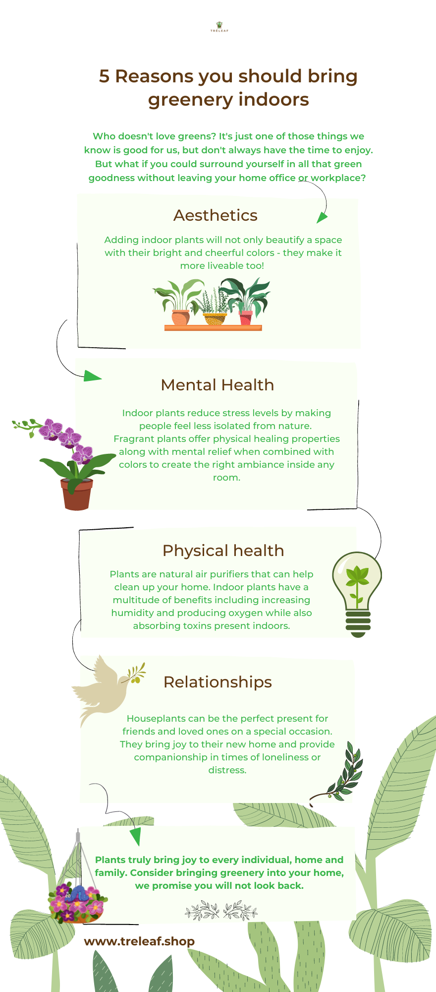 infographic about reasons to bring plants indoors