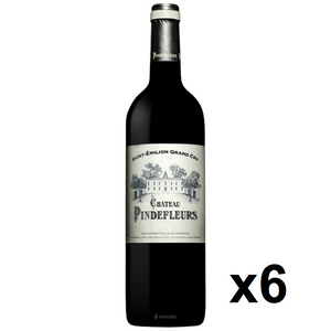 OKiBook - Chateau Pindefleurs 2010, Saint-Emilion Grand Cru, Bordeaux, France - 750ml [6 bottles]