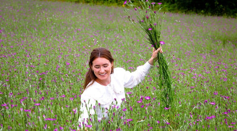 Picking Irish native wildflower seeds from a meadow
