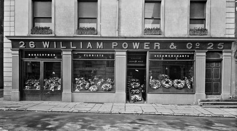 William Power Seed Waterford