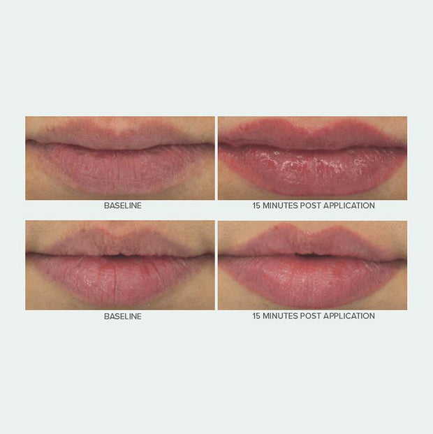 HYDRA-PLUMP LIP TREATMENT.