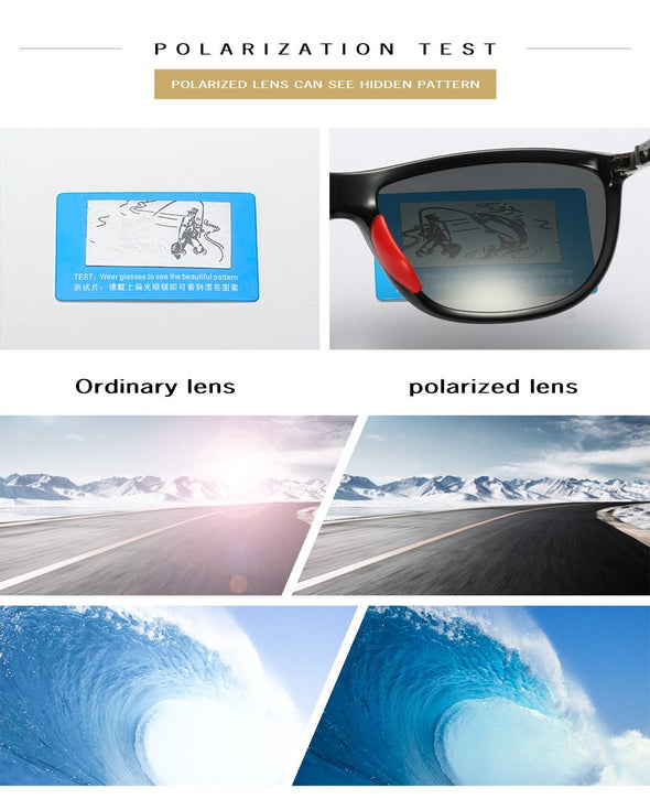 sunglasses FE907