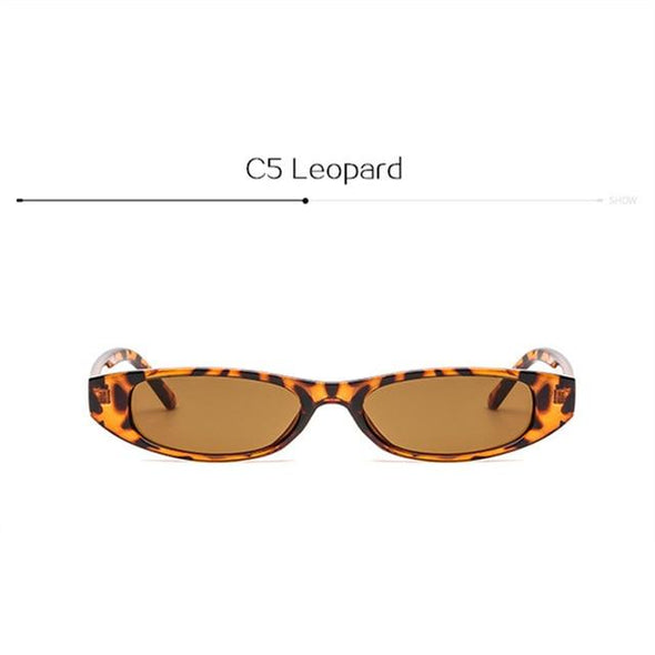 Small Frame Sunglasses