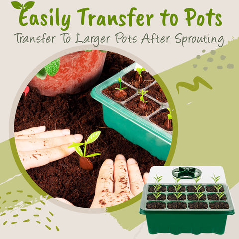 easily transfer to pots