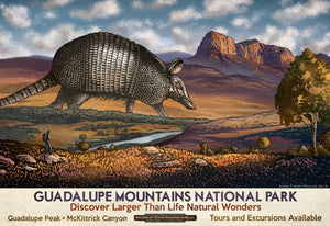Guadalupe Mountains- Fantasy Texas Travel Poster
