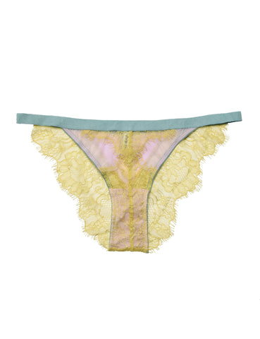 Willow mesh and lace knicker