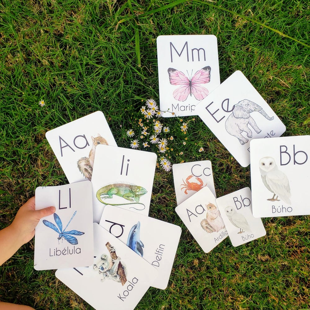 Level 2 Spanish Animal Alphabet Flash Cards