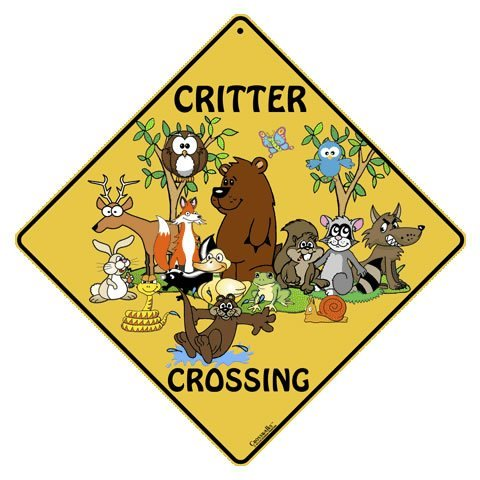 CROSSWALKS Critter Crossing 12