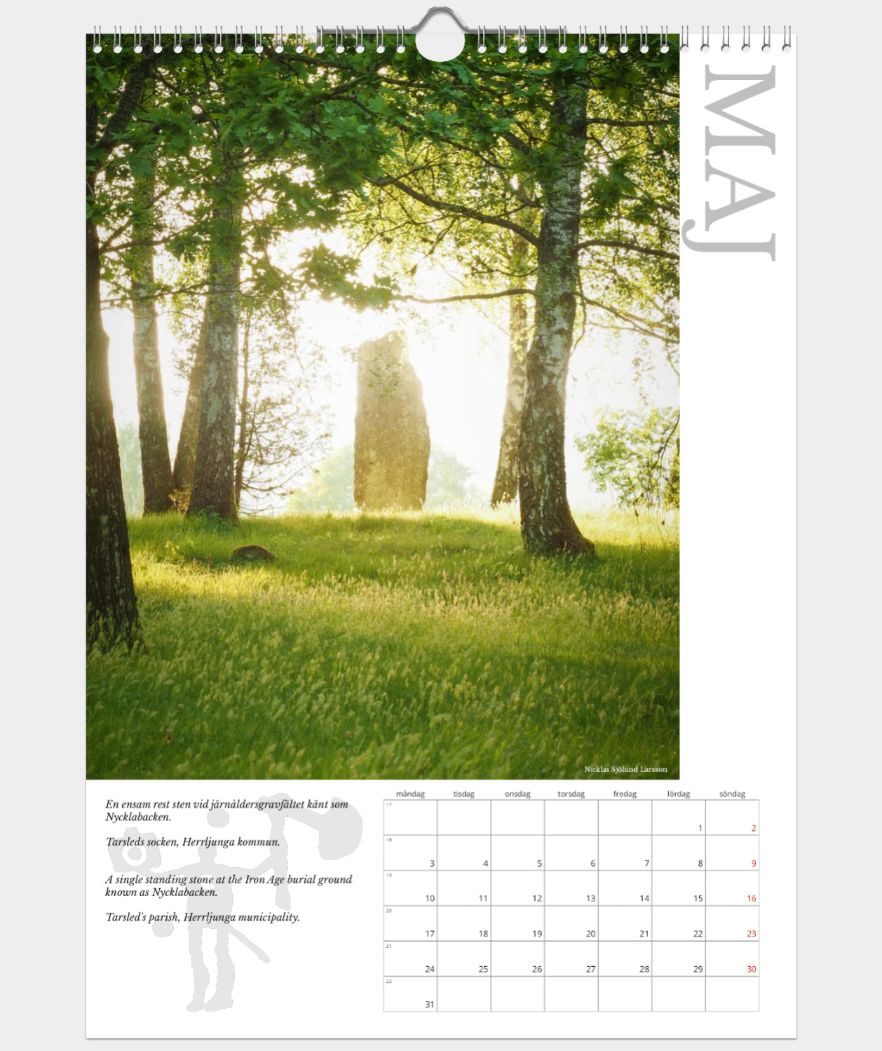 Wall Calendar (A3, matte paper, regular print version, signed)