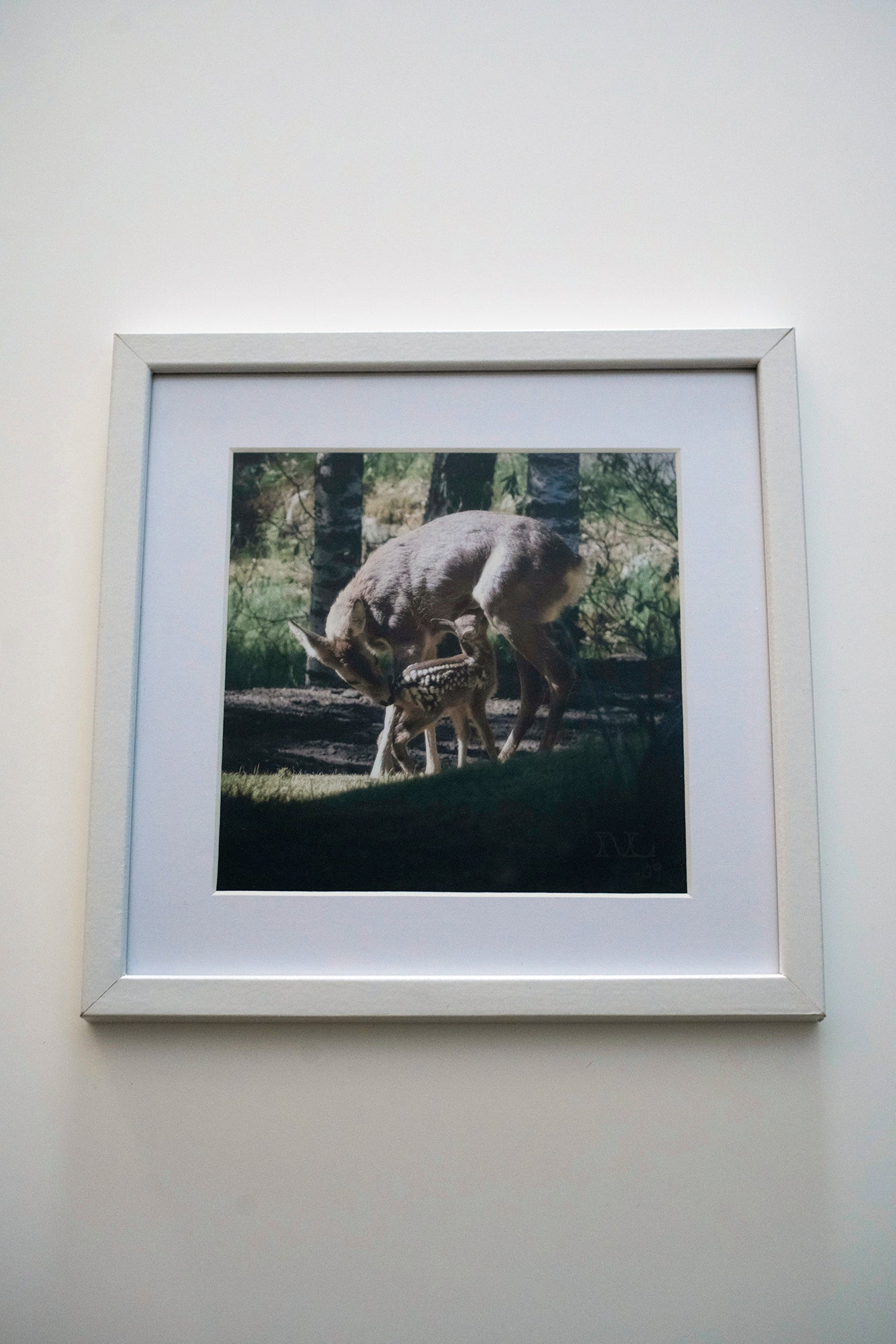 Nature/Nurture (signed and framed satin paper print)