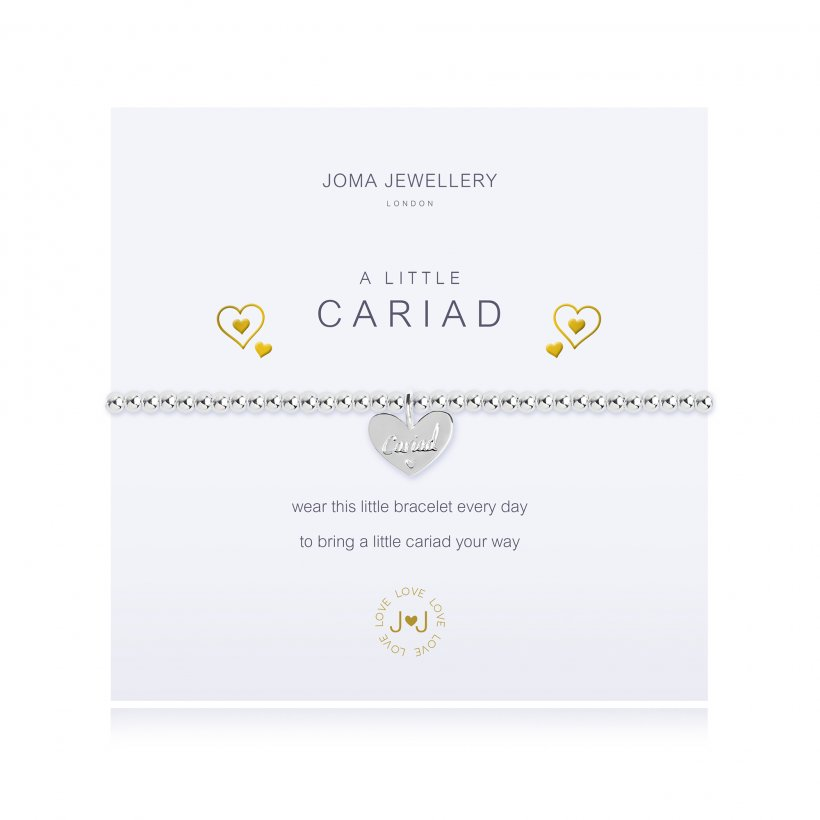 Joma Jewellery 'A Little Cariad' Bracelet