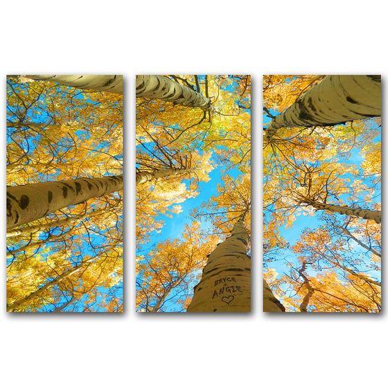 Three pieces of Aspen tree art looking up through orange branches to the sky - Personal-Prints