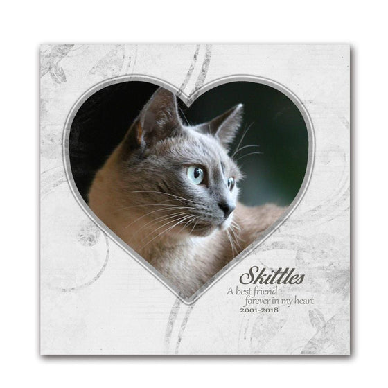 Personalized Pet Cat Portrait Memorial Print - White Background