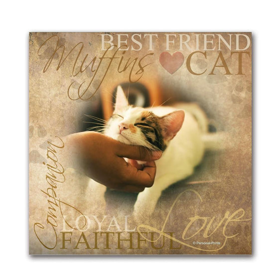 Cat Pet Portrait to Art - Personalized