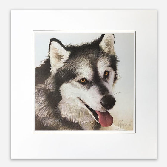 Alaskan Malamute Painting by Scott Kennedy