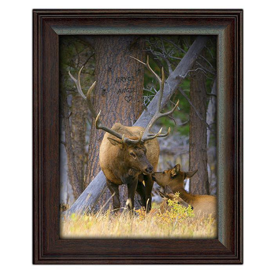 Rustic cabin decor elk print featuring two elk in the woods, one laying down reaching up to kiss the other - Personal-Prints