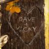 Personalized Names in heart carved on tree - detail image