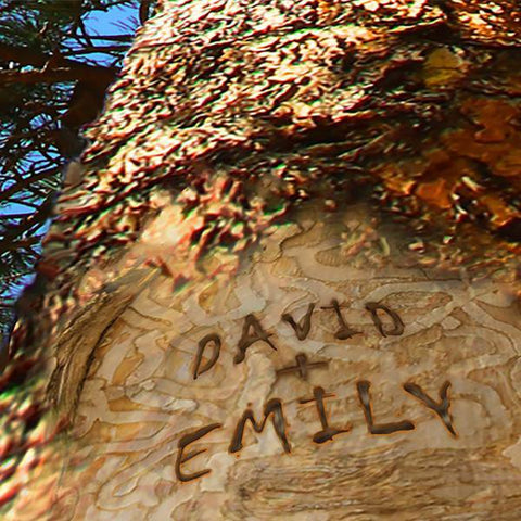 Detail of Names Personalized on Tree