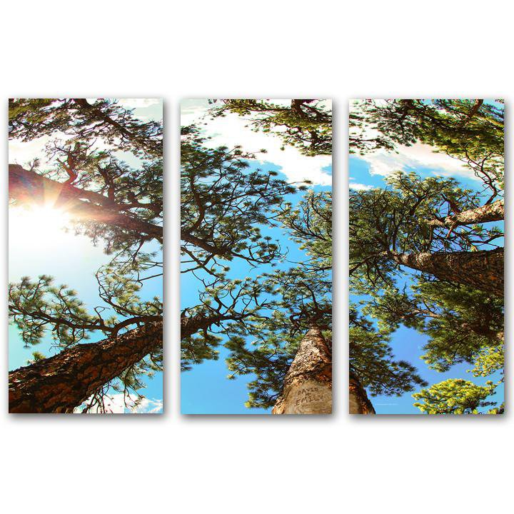 Through The Pines - 3 Personalized art Panels
