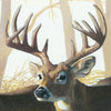 Whitetails 2 - Original Painting