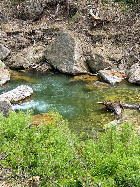 small stream plunge pool and run fly fishing