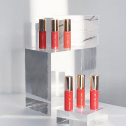 PARADISE VELVET LIP MOUSSE MINI 6 SET (BEST SELLER COLLECTION)