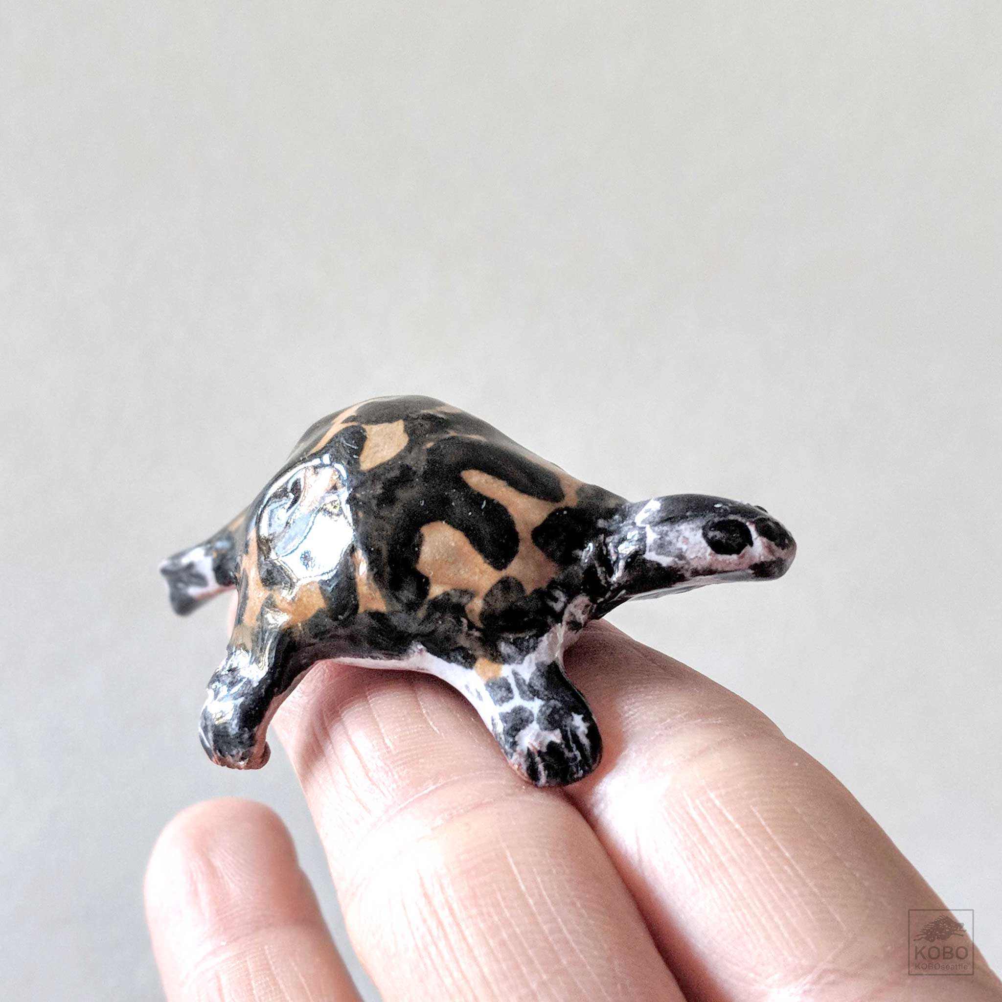 Pink and Brown Turtle