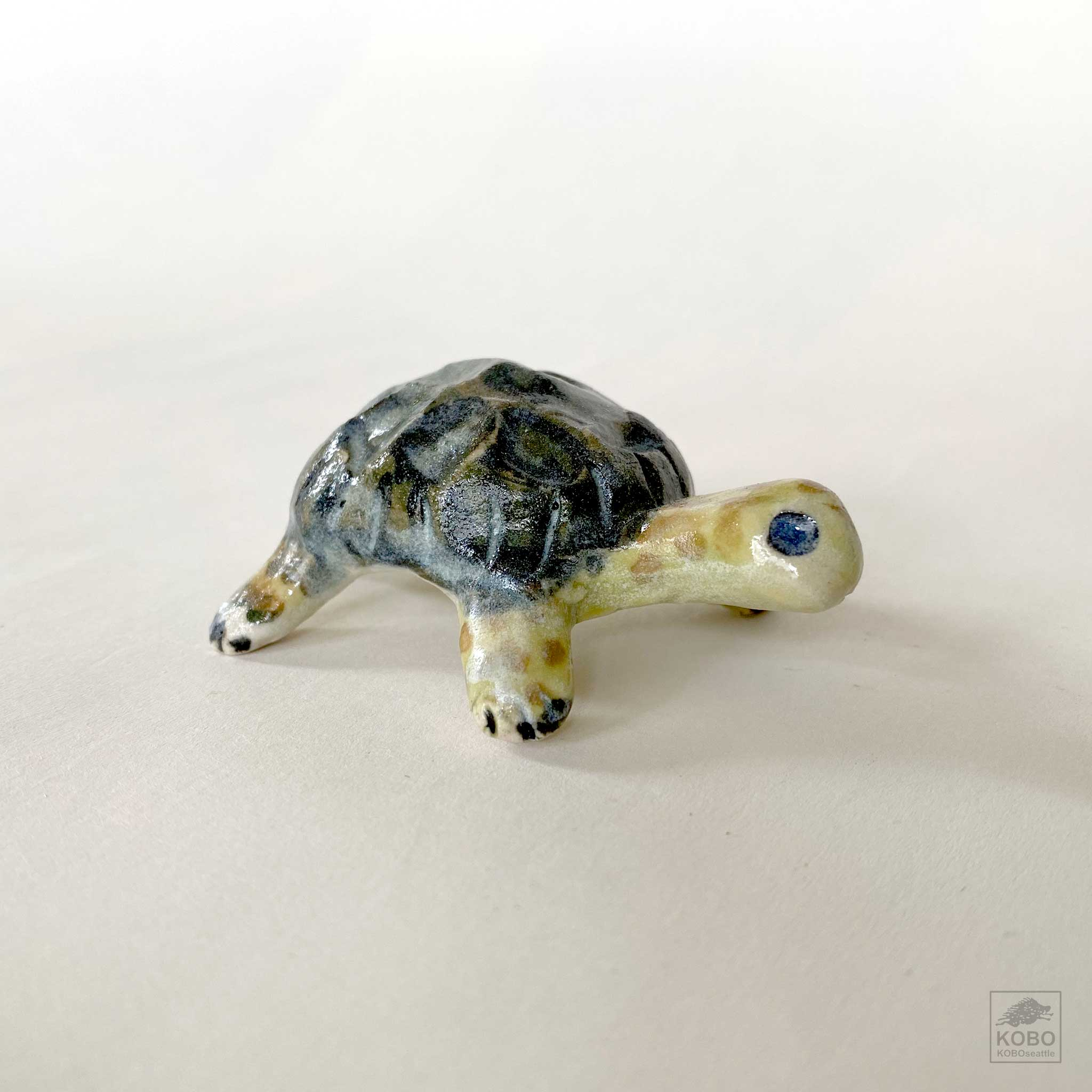 Turtle with Dark Green Shell