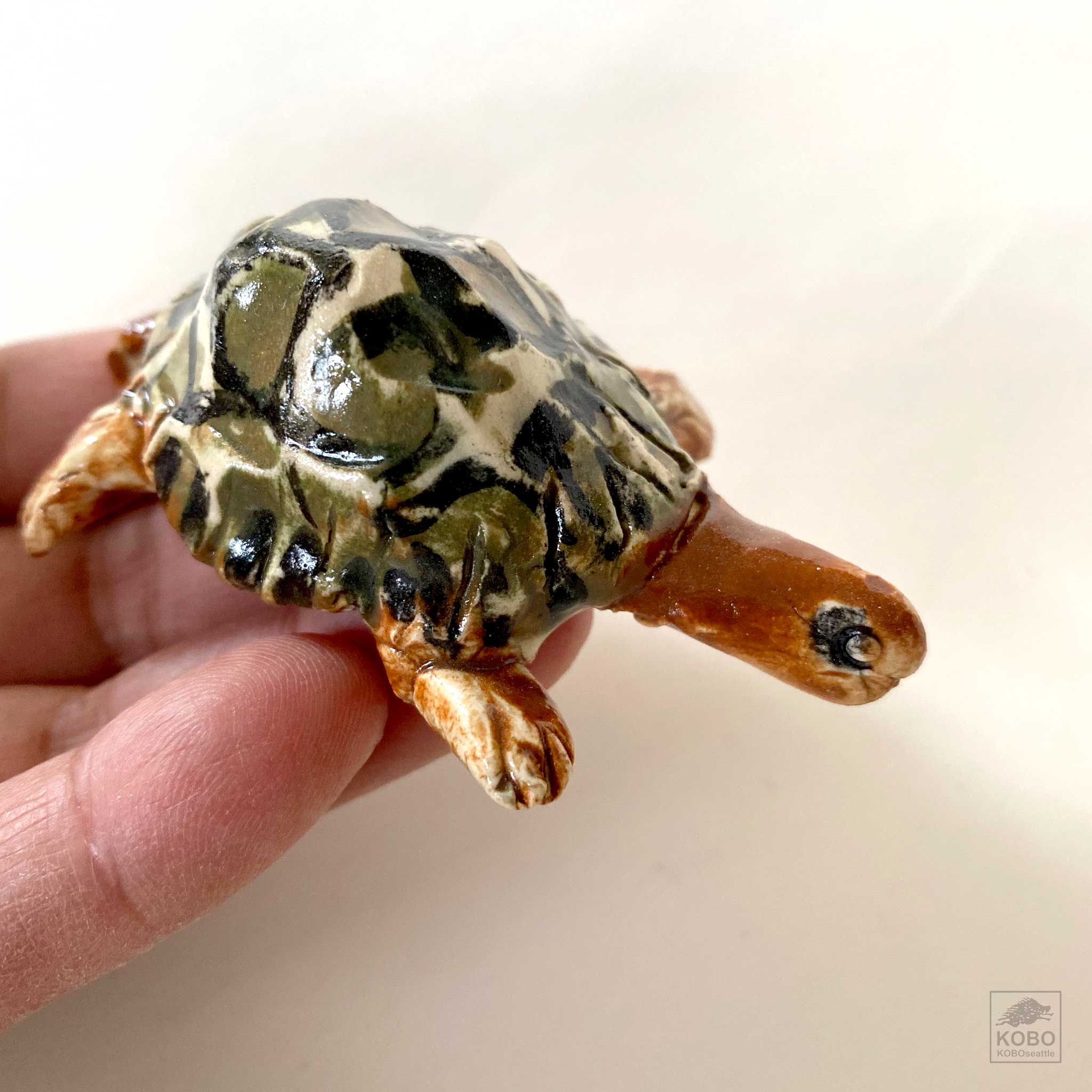 Turtle with Green and Black