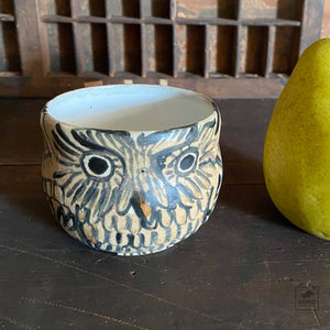 Owl Cup 11 by Aaron Murray
