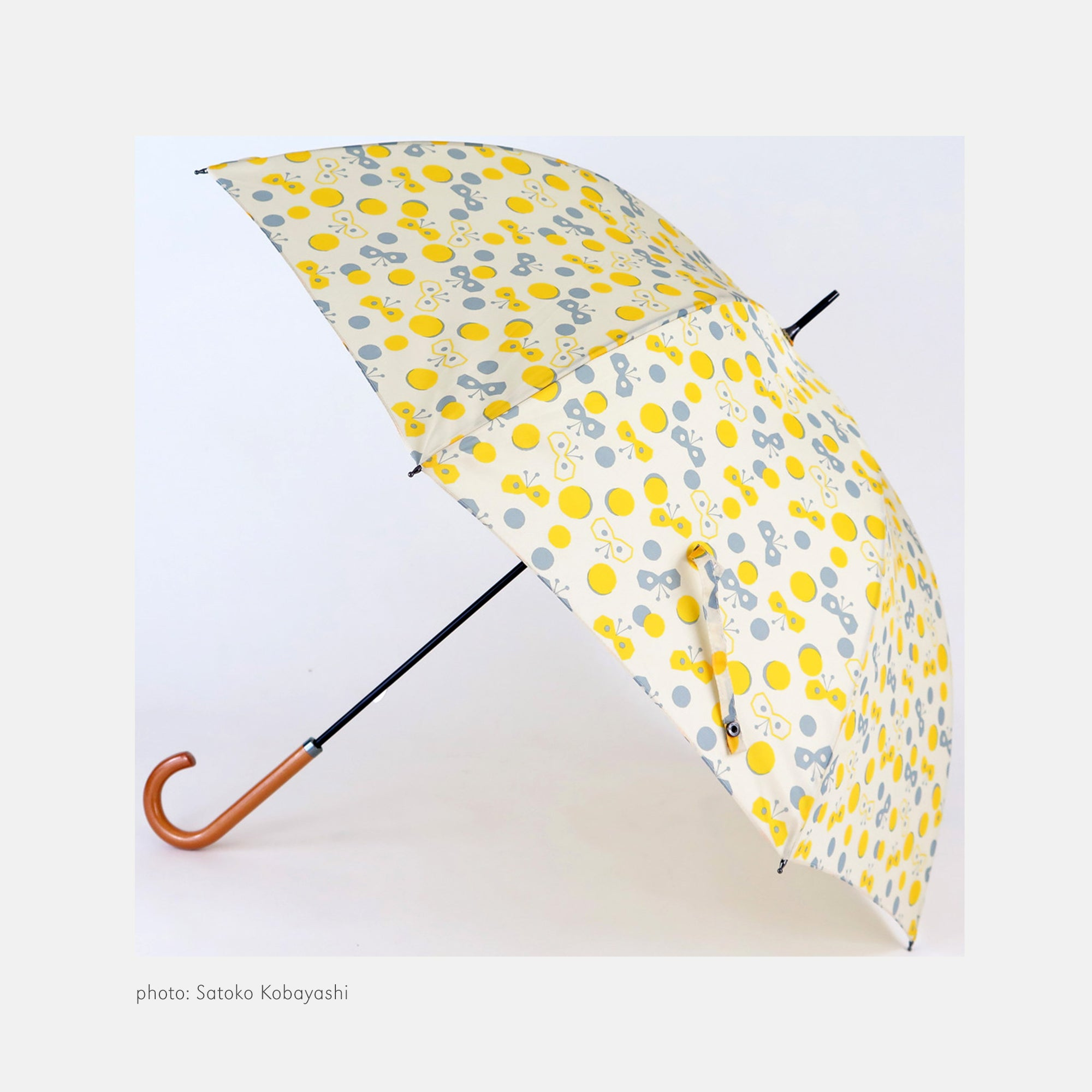 Pare Umbrella - DIY Butterfly