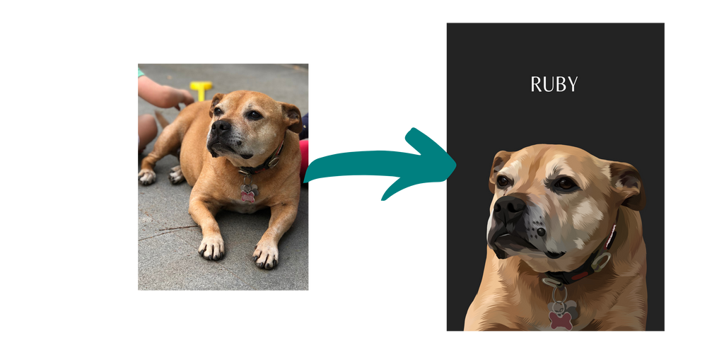 pet portrait before and after example