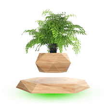 Load image into Gallery viewer, Creativity Wood Grain Levitating Air Bonsai Pot Magnetic Levitation Floating Plant Pot For Small Indoor Potted Plants Or Herbs