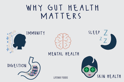 Why Gut Health Matters