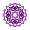 The 7th Chakra – Crown Chakra – Sahasrara