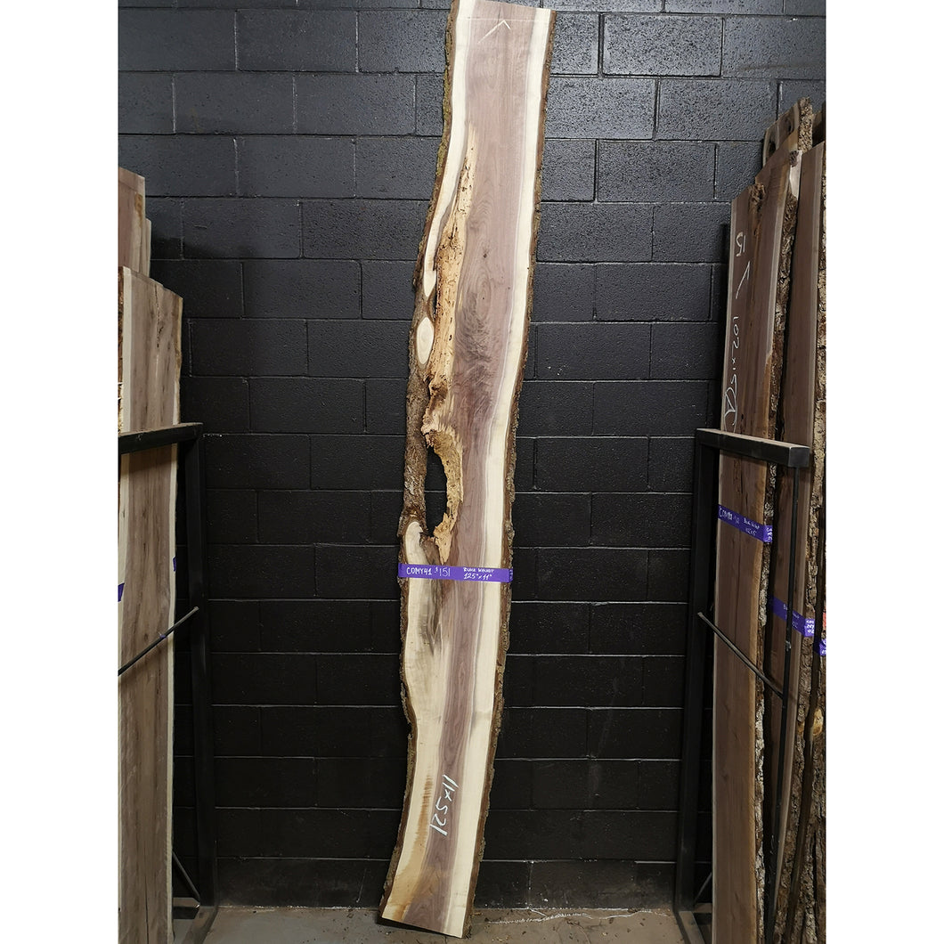Black Walnut Slab - C01MY41