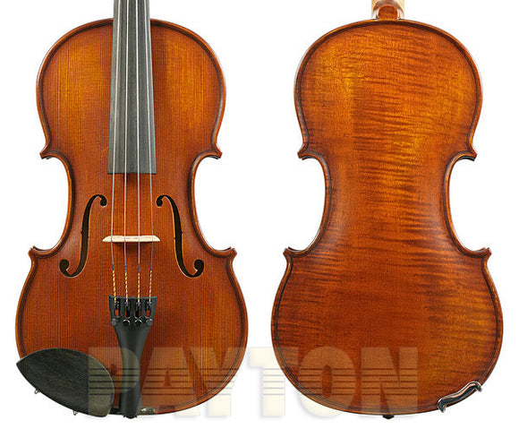 Gliga I Violin Outfit 1pc-Back Dark Antique w/Violino