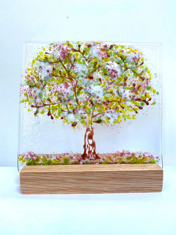 Large Trees - by Kate Doherty - Mauralen Glass