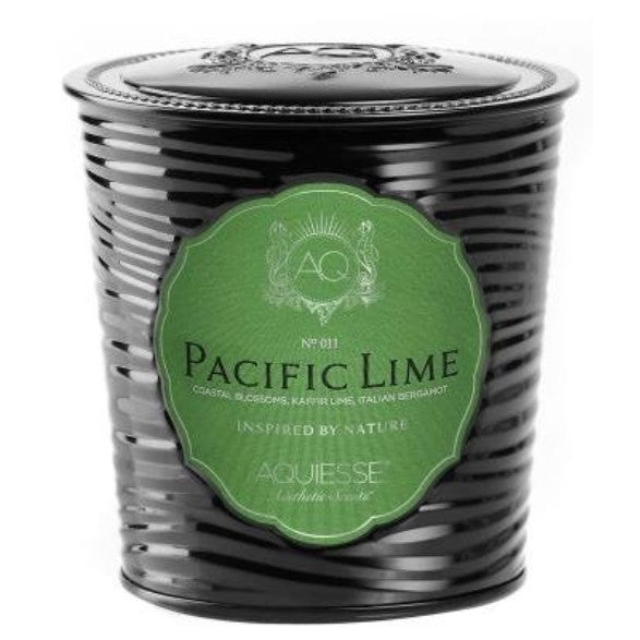 Aquiesse Portfolio Collection Pacific Lime Scented Soy Candle - ArtsiHome