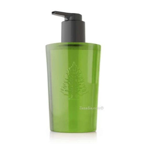 Thymes Frasier Fir Hand Wash, 8.25 oz