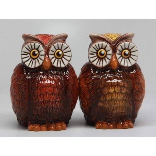 ATTRACTIVES SALT AND PEPPER SHAKER - OWLS - ArtsiHome