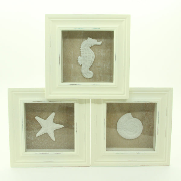 3 Sealife Shadow Boxes Seahorse Starfish Shell Seashell - ArtsiHome