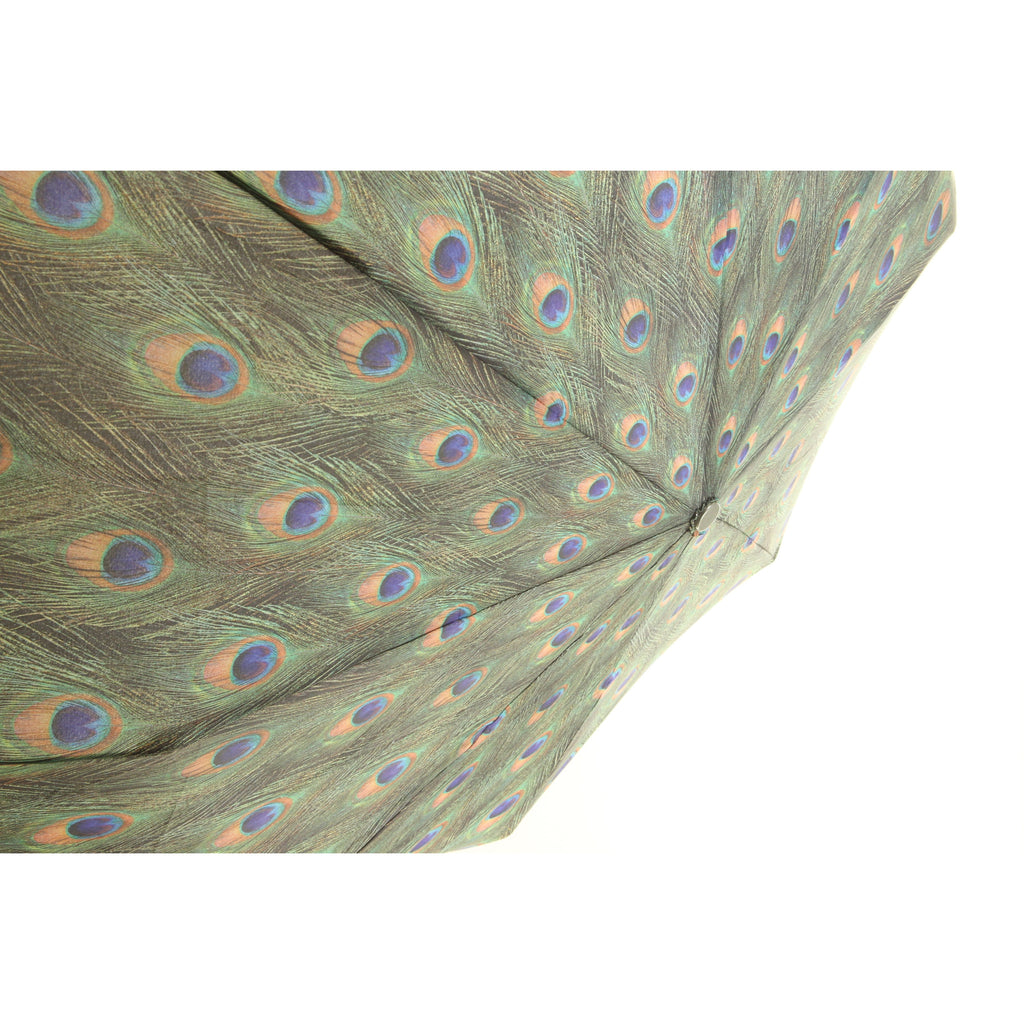 Galleria Enterprises Folding Collapsible Umbrella Peacock - ArtsiHome